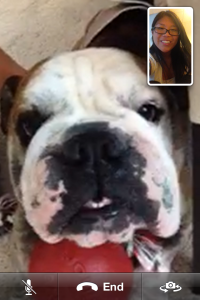 Hurley Facetime