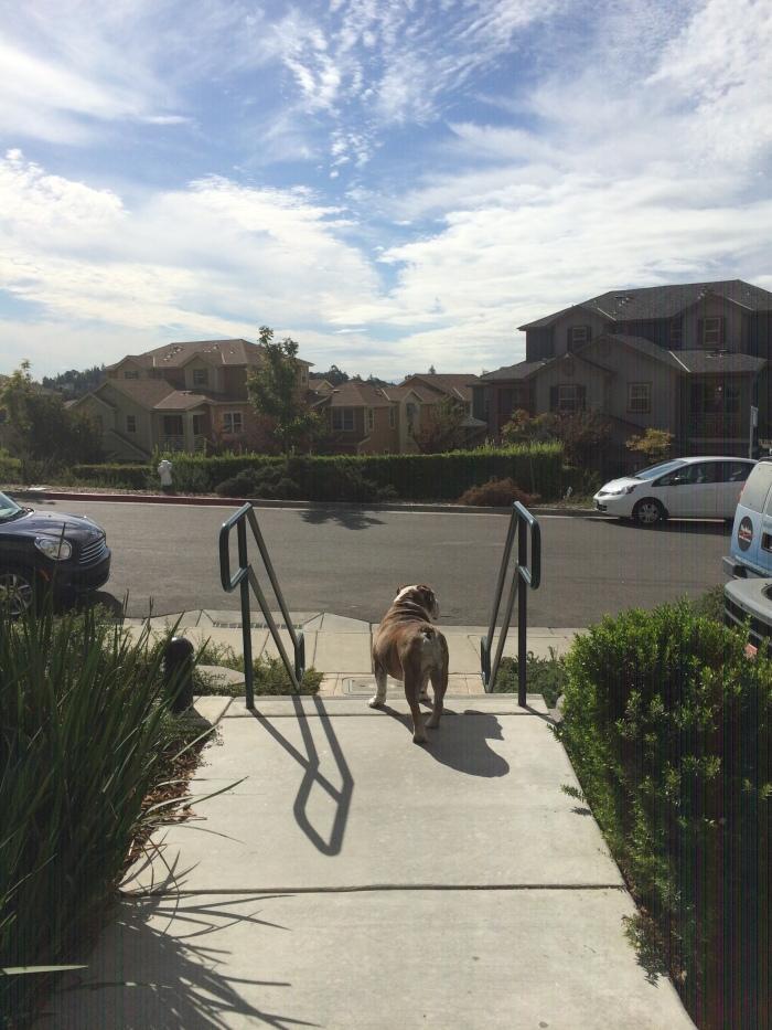 hurls outside