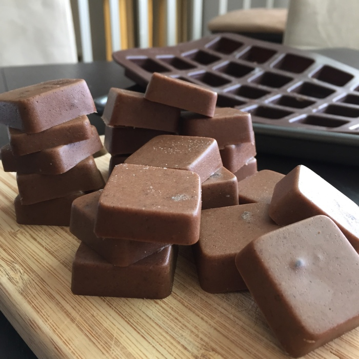 Paleo Catwon Mint Chocolate Gummies